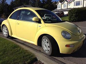 VW Beetle - well maintained, very clean.