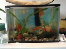 Goldfish complete set aquarium and accesories North Melbourne Melbourne City Preview