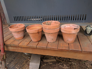 Terracotta pots Goodna Ipswich City Preview