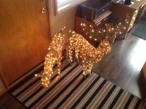 Christmas lighted deer