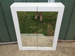 Shaving cabinet Earlwood Canterbury Area Preview