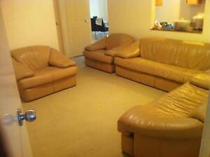 Spacious & tidy Room in West gosford for rent West Gosford Gosford Area Preview
