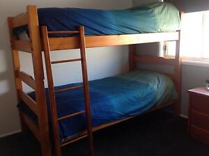 Bunk Beds (timber)- including Mattresses Albion Park Shellharbour Area Preview