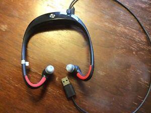 Motorola Bluetooth S10-HD Wireless Sweat-Proof Headphones
