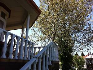 mature person for TRULY HUGE front bedroom in rambling mansion Northcote Darebin Area Preview