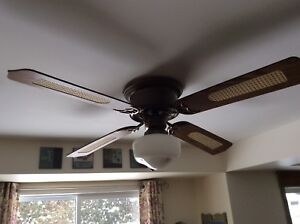 Variable Speed Ceiling Fan and Light