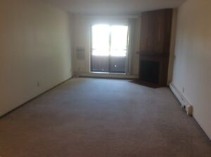 2 Bedroom Apartment Lakeview