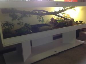 REPTILE ENCLOSURE WITH STAND Campbelltown Campbelltown Area Preview