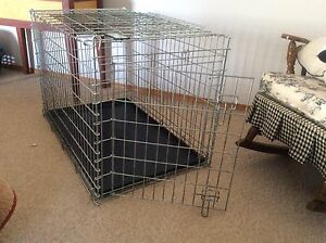 "Dog kennel, wire mesh, 36""X 23""X 24"" high"