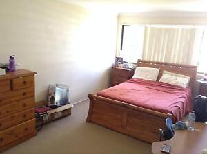LARGE Room for a Couple, Yeronga Yeronga Brisbane South West Preview
