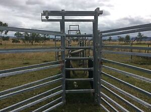 Cattle yard panels Mount Beppo Somerset Area Preview
