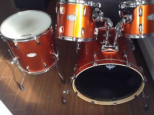 Beautiful Pearl ALL BIRCH Shells only 375