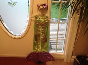 Girl's Mermaid & Fairy Costumes for Sale!