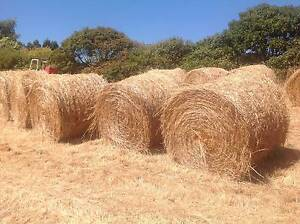 Hay Round Bales Cygnet Huon Valley Preview