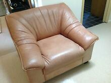 Leather Lounge 3 seater and 2 x single Davidson Warringah Area Preview