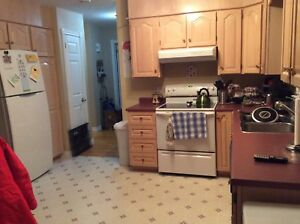 Room for rent in a spacious two bedroom apartment