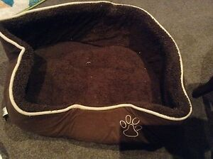 Dog bed and clothes Singleton Heights Singleton Area Preview