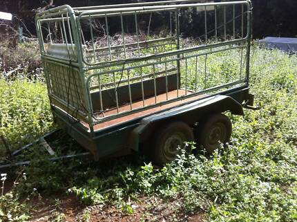 Tandem caged trailer Lismore Lismore Area Preview
