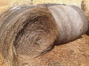 Mulch Hay Large Round Bales Cygnet Huon Valley Preview