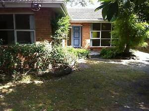 Beaumaris - Freshly painted 3 BR home with polished floor boards Beaumaris Bayside Area Preview
