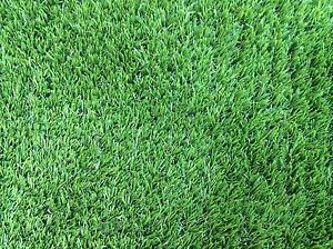 Synthetic Lawn for sale Wilson Canning Area Preview
