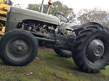 Grey Fergie TEA 20 1949 Tractor Kangaroo Ground Nillumbik Area Preview