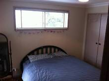 Furnished room for rent Brookvale Manly Area Preview