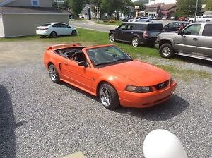 Ford Mustang 40 i'eme anniversaire  2004