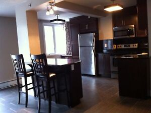 1 Bedroom Executive Condo Downtown - Available August 1
