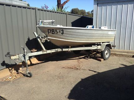 savage 3.1metre tinny , trailer & motor Maryborough Central Goldfields Preview