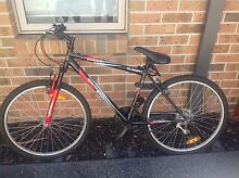 Mountain Bike for SALE!!! Araluen Gympie Area Preview