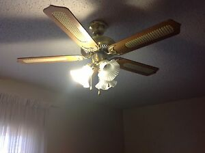 Ceiling fan plus light for sale