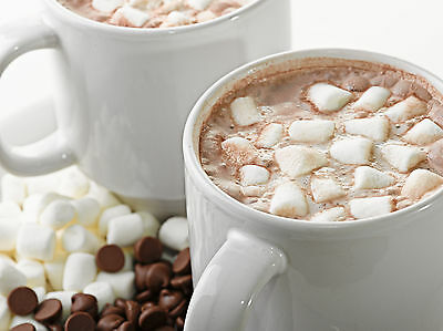 - Hot Chocolate Dreams Soap / Candle Fragrance Oil 1-16 Ounce **Free Shipping**