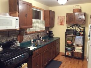 Selling Cabinets, Sink and Counter top