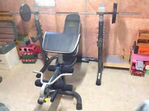 Squat rack, bench, bar and 100 lbs cast iron weights