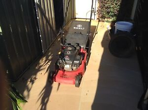 Sanli 4 stroke mower Forster Great Lakes Area Preview