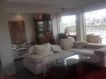 KING LIVING - Second Hand Sofa MUST GO THIS WEEKEND Moore Park Inner Sydney Preview