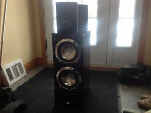 Bergmann subwoofer and satelite speakers