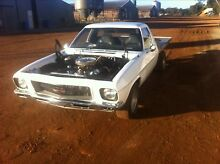 Holden HQ project 1 tonner Gingin Gingin Area Preview