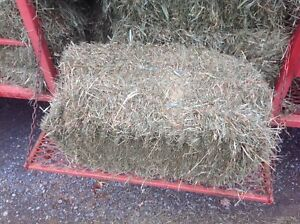 Small square bales,2nd cut
