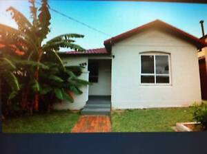 Quality 3 bedroom plus sunroom House in Bankstown for rent $440 Bankstown Bankstown Area Preview