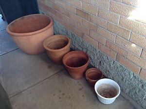 Terracotta Pots x4, Plastic White Pot x1 Royal Park Charles Sturt Area Preview