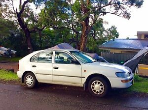 1999 Toyota Corolla Hatchback North Narrabeen Pittwater Area Preview