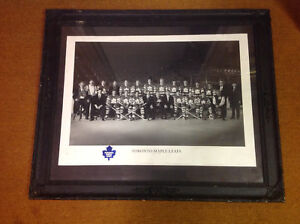 TORONTO MAPLE LEAFS QUINTOLOGY PICTURE