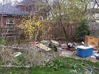 Yard/ property clean-up, junk removal