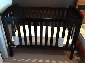 TASMAN ECO COT / TODDLER BED  INCLUDING MATTRESS Cobbitty Camden Area Preview