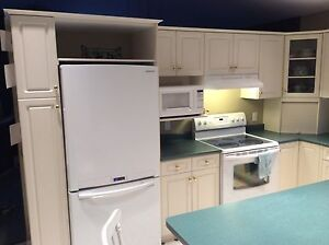 Kitchen Cabinets and Counter Tops