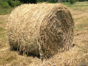 4x4 round bales for sale just right weight for compact tractor.