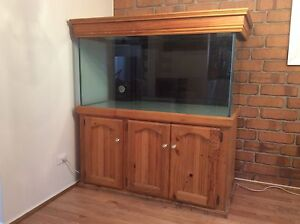 Custom 4 x 2 x 2 foot Fishtank - Trickle filter system. Edwardstown Marion Area Preview