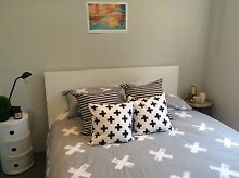 Malm Bedframe White, Queen Size Bronte Eastern Suburbs Preview